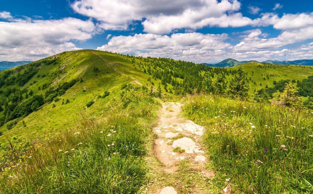 Consejos para preparar una escapada rural perfecta