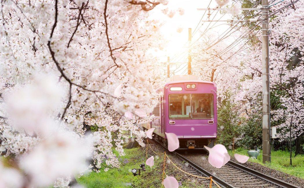 Dónde viajar en primavera: 8 lugares del mundo para acertar con el destino
