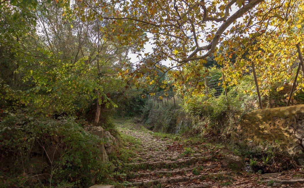 5 planes en Mallorca perfectos para el otoño
