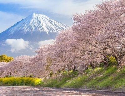 ¿Cuándo es la mejor época para viajar a Japón?