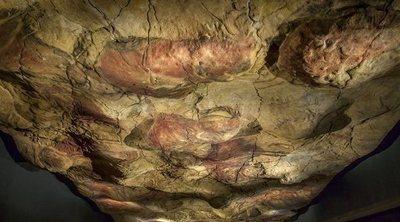 Visita las Cuevas de Altamira: un lugar lleno de historia en el corazón de Cantabria