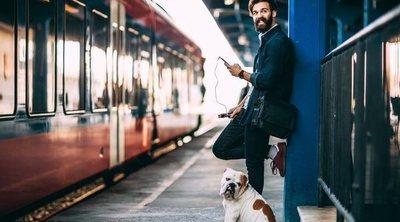 Viajar con perros: consejos, recomendaciones y prohibiciones para quienes viajan con su mascota