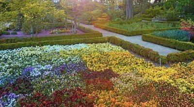 Visita el Jardín Botánico de Madrid: un oasis en pleno centro