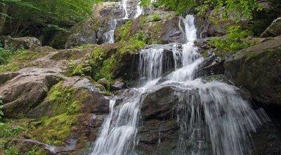 Qué ver en Virginia: cinco paisajes impresionantes que tienes que visitar